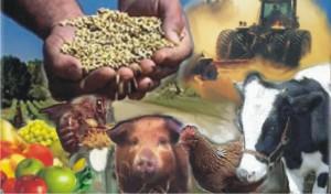 Estado terá mais fiscais agropecuários